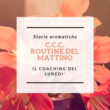 C.C.C. ROUTINE DEL MATTINO/2